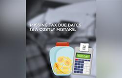 Vertical - Tax Season