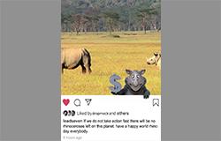 3d Template - Rhino Instagram Skin (deposit Fee)